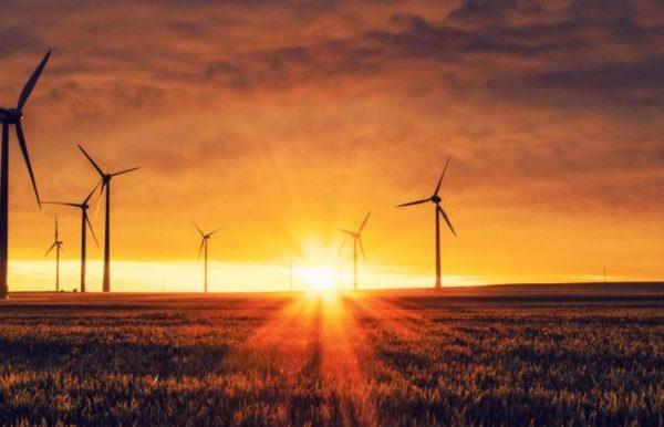 Un velo ecológico para Internet: cinco preguntas al Dr. Chomora Mikeka Thumbnail
